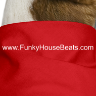 Design ~ FunkyHouseBeats Dog Bandana