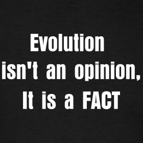Evolution isn t an opinion it is a fact t shirt funny sheldon quotes