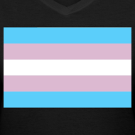 Design ~ Transgender Pride Flag V-Neck