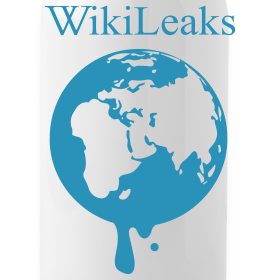 Design ~ WikiLeaks Water Bottle