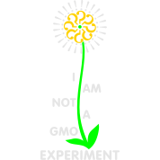 I am Not a GMO Experiment v2
