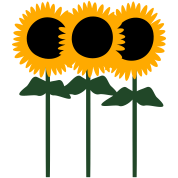 Three Cute Sunflowers With Stem And Leaves