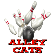 Bowling Team Alley Cats
