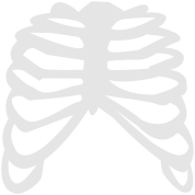 white ribcage ribs design