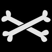 cool crossbones ( maybe Pirate cross Bones)