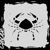 cancer zodiac grey