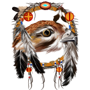 Hawk Face Dream Catcher.
