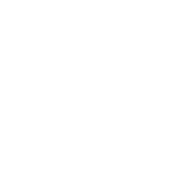 Design ~ photoshop__provoke__treeshirt