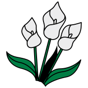 white lily flowers for remembrance