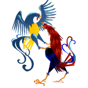 Two Colorful Fighting Roosters