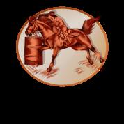 Barrel Horse Framed