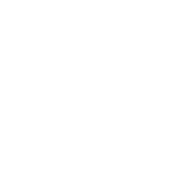 Fingerprint in white
