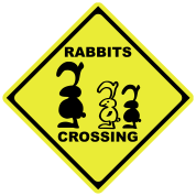 rabbits crossing sign traffic bunny rabbit bunnies hare cony leveret bimbo