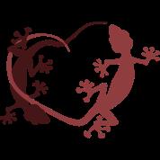 Gecko heart