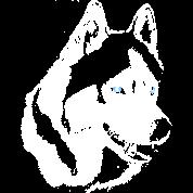 Husky Shirts Malamute / Husky Sled Dog Gifts