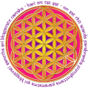 Flower Of Life - moola mantra