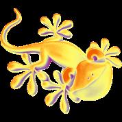 SMILING GECKO / Reptile