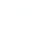 Babu Bhatt's DREAM CAFE