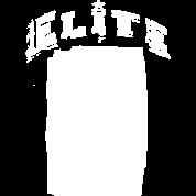 Elite Skull 01