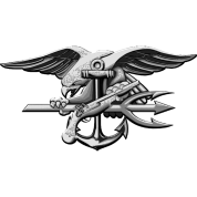 US Navy Seal Team VI Grey