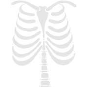 Skeleton Bones Front Vector Art