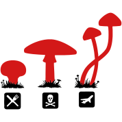 Mushrooms, psilocybin food killing flies