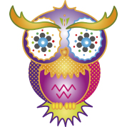 A psychedelic owl