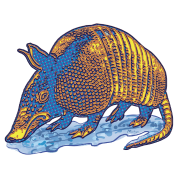 Armadillo Big Dot