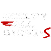 Occupy ALL Streets