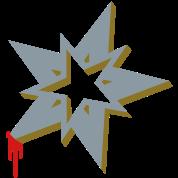 A ninja Christmas Star
