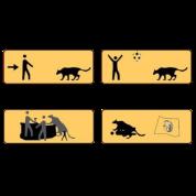 DIY Cougar Hunting