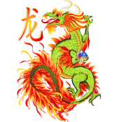 New Year Dragon and Symbol