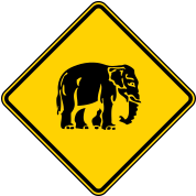Caution Elephant Crossing Sign