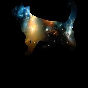CELESTIAL CAT