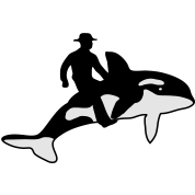 Orca Rider