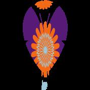 designed_air_balloon3