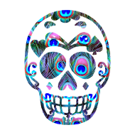 Design ~ PEACOCK SUGAR SKULL