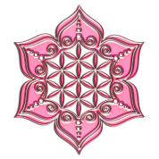 Flower of life, Lotus - Flower, pink, Symbol of perfection and balance