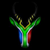 Springbok Flag