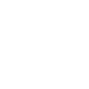 FANTASY FOOTBALL COMMISH
