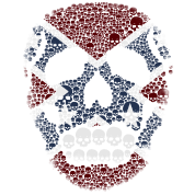 Mosaic Rebel Skull Flag