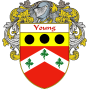 Young Coat of Arms/Family Crest