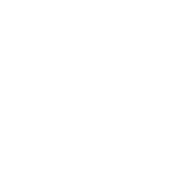 CHRISTMAS VACATION HOLIDAY PATTERN