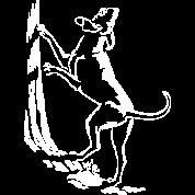 Hunting Dog Shirts Art Hound Dog Gifts