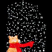 Tabby Snowcat