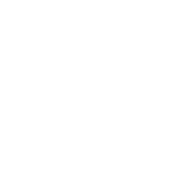 Irish Boxing Team (Distressed Design)
