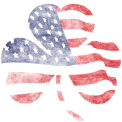American United States USA Shamrock Flag Shirts