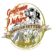setter_gentleman_by_nature