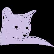 CAT 1c_4dark