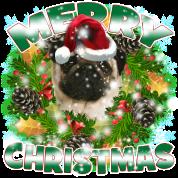 Merry Christmas Pug